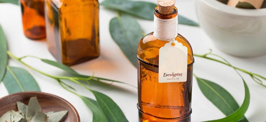Los beneficios del eucalipto para el cabello y la piel