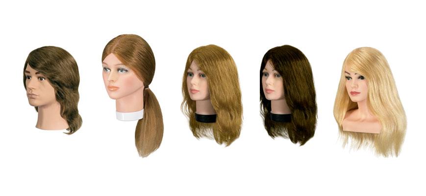 cabezas de maniquí Bergmann